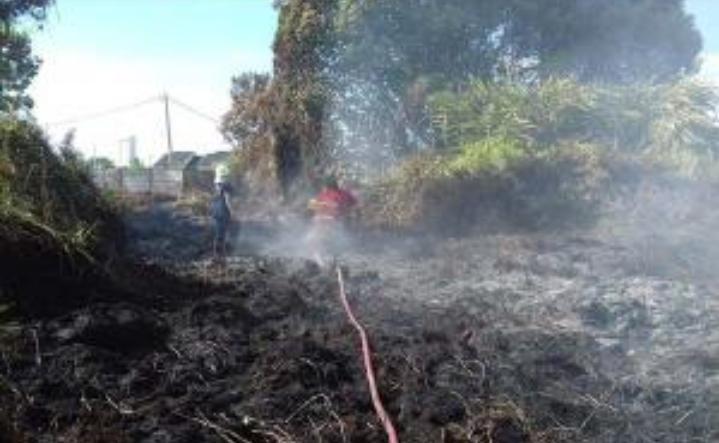 Empat Hari Pertama Tahun 2019, Sudah 41 Hektare Lahan di Riau Hangus Terbakar