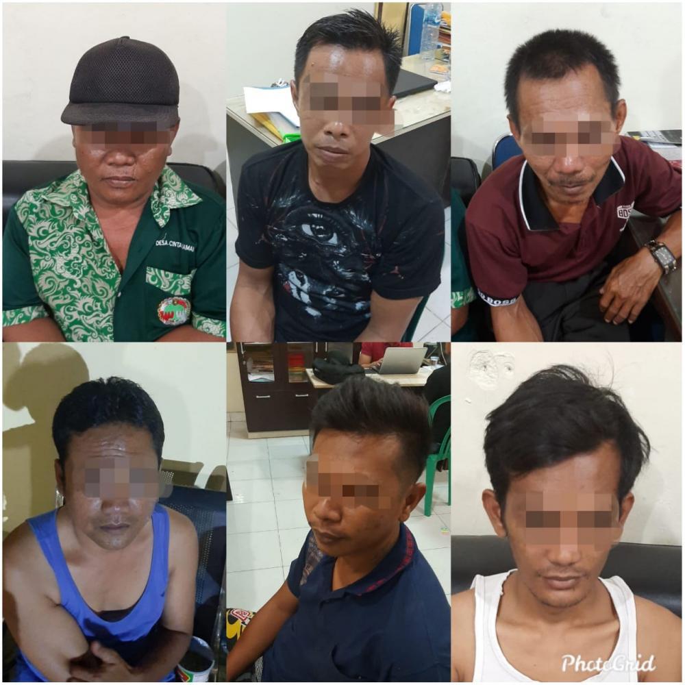 6 Pelaku Judi Gelper Ikan-ikan di Wilayah Tapung Hilir Di Ciduk Polres Kampar