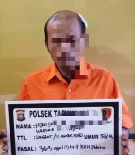 Polsek Tapung Hulu Tangkap Pelaku Pencurian Buah Sawit Milik PT. BSP di Desa Danau Lancang