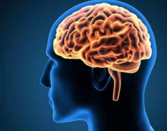 Untuk Pasutri,Berhubungan Sek Bisa Meningkarkan Kecerdasan Otak
