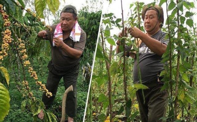 Kisah Susno Duadji, Mantan Kabareskrim Polri yang Kini Pilih Tinggal di Desa dan Jadi Petani