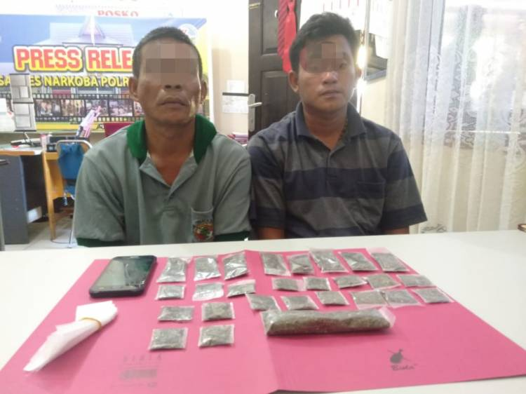 Resnarkoba Polres Kampar Tangkap 3 Pengedar Narkotika Daun Ganja Kering di 3 Lokasi