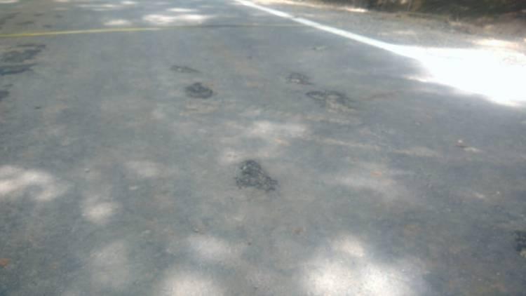 Kondisi jalan banyak yang berlobang sebelum tahapan FHO