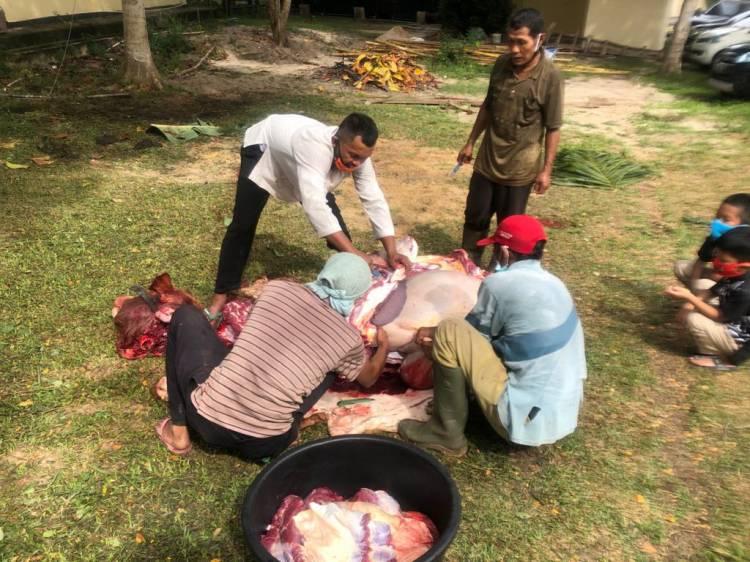 Polres Rohil dan Jajaran Gelar Pemotongan 57 Ekor Hewan Qurban