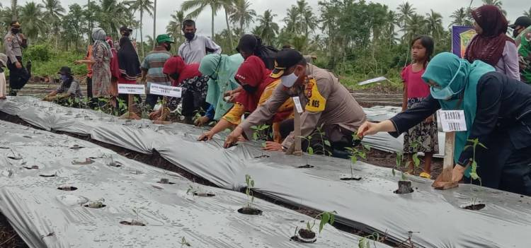 Masyarakat Tembilahan Hulu Lawan Corona Dengan Kampung Tangguh