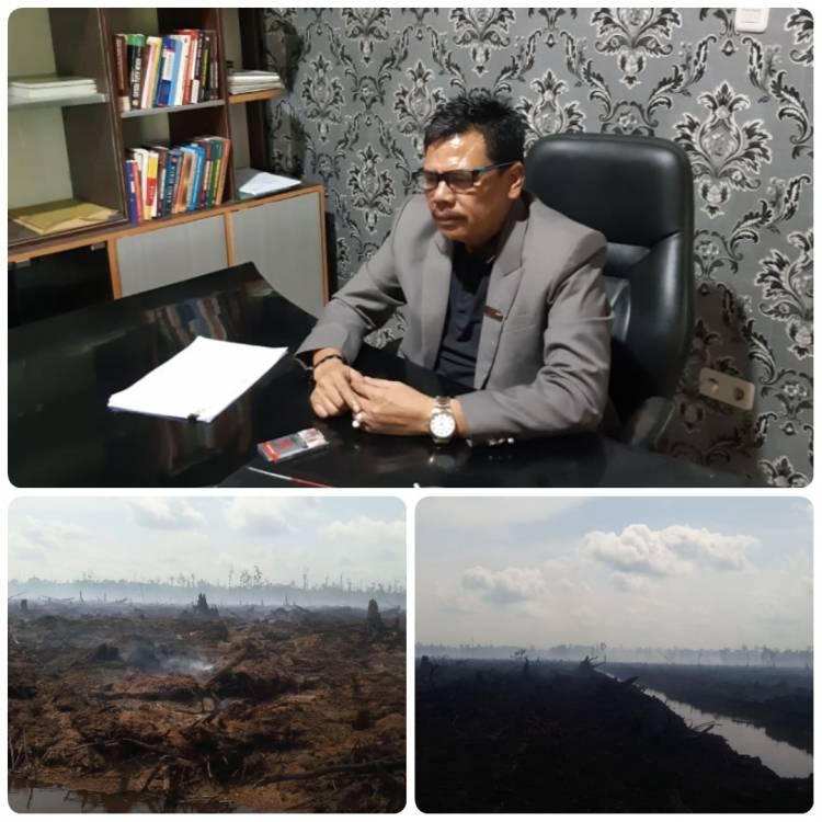 Penegakan Hukum Karhutla di duga di Areal Konsesi PT Arara Abadi Masih  belum terlihat