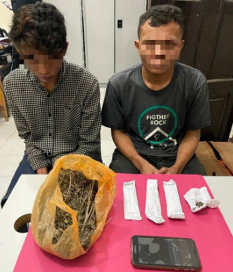Resnarkoba Polres Kampar Tangkap 2 Orang Pengedar Narkotika Jenis Daun Ganja Kering