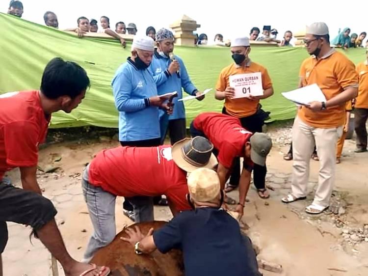 Masjid Al-Huda Tembilahan Laksanakan Pemotongan Hewan Kurban Iduladha 1442 H dengan Prokes Ketat
