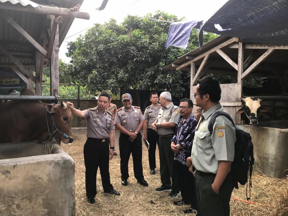 Tim gabungan Laksanakan pemataun penjualan hewan qurban di wilayah Kota Banjar
