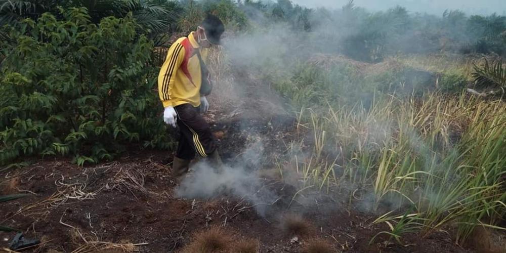 Puluhan Hektar Lahan Terbakar Milik Perusahaan PT SAL dan PT SAGM di Kabupaten Indragiri Hilir