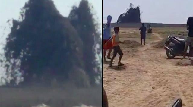 Seketika Belasan Kerbau Lenyap oleh Semburan Lumpur di Blora