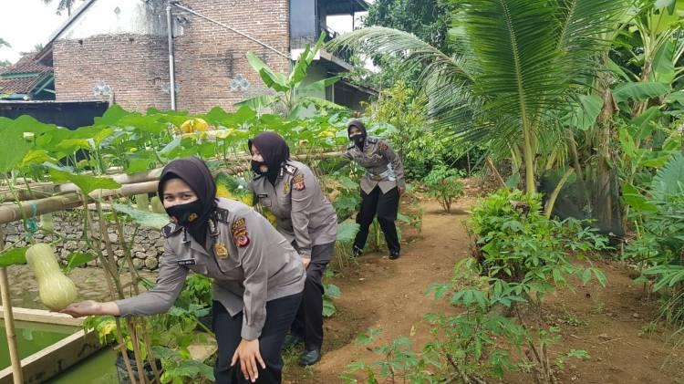 Safari KWT dan UMKM Kapolres Banjar di Wilayah Kota Banjar Terus Berlanjut