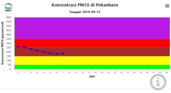 Kualitas Udara di Pekanbaru Masih Tak Sehat, Ini Imbauan BNPB