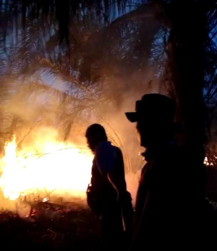 Karlahut di Desa Sialang, BPBD Inhil berjibaku Padamkan Api yang Mulai Mendekati Pemukiman Warga