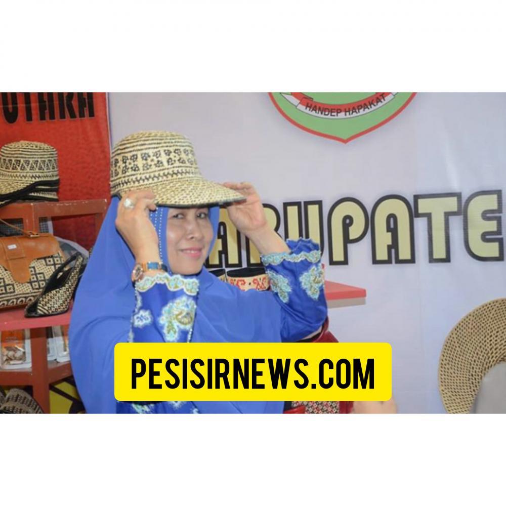 Dekranasda Kab Inhil Ikut Pameran Dekranas Di Jakarta