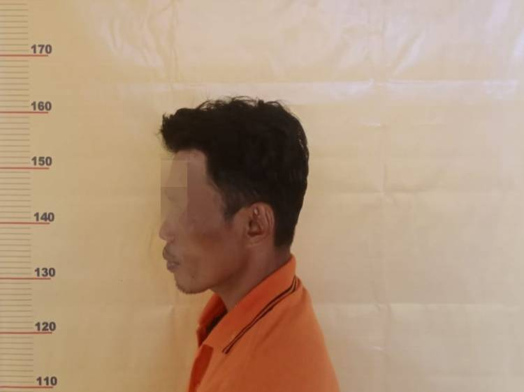 Cabuli Gadis Tetangganya, Pria Beristri di Rohil ini Diringkus Polisi