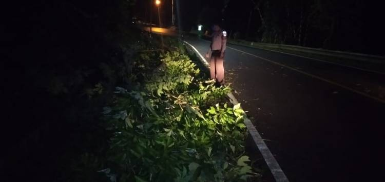 Unit Patroli Kepolisian Sektor Pataruman Evakuasi Pohon Tumbang Di Tembungkerta