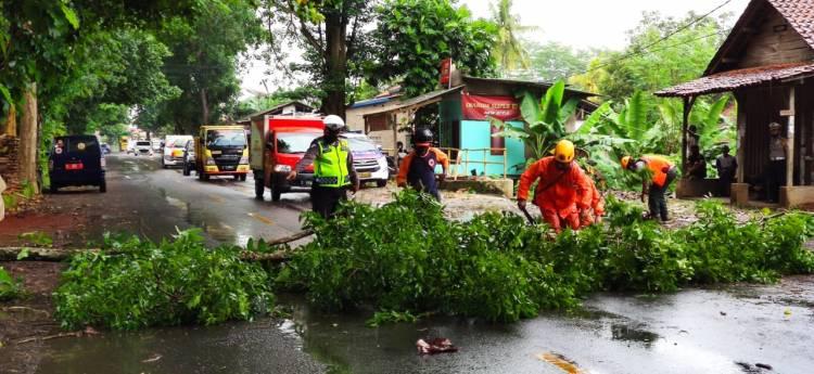 BPBD Kota Banjar dan Sat.Lantas Evakuasi Pohon tumbang