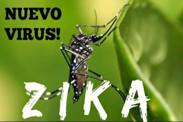 Alhamdulillah, Virus Zika Belum Terdeksi di Kota Dumai
